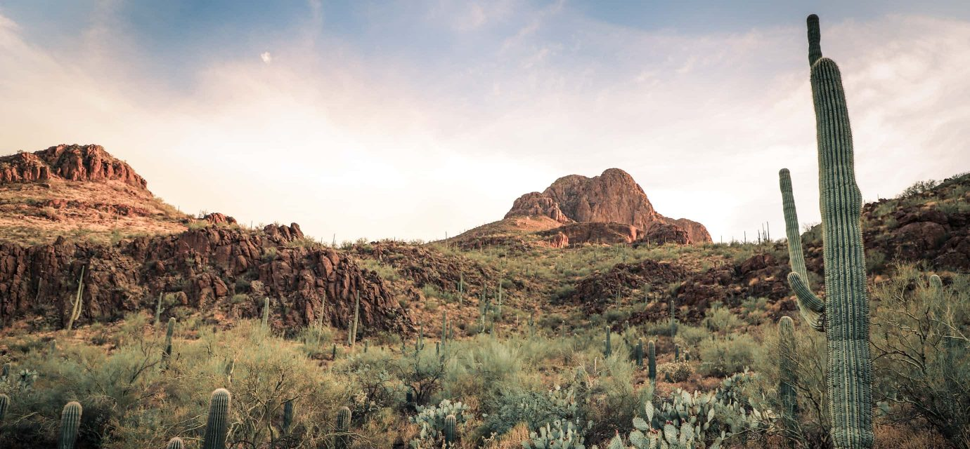 Desert hills surrounding Tucson Arizona